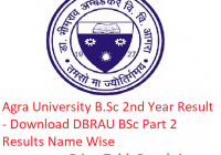 Agra University B.Sc 2nd Year Result 2019 - Download BSc Part 2 Results DBRAU Exam