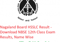 Nagaland Board HSSLC Result 2019 - Download NBSE 12th Class Exam Results, Name Wise