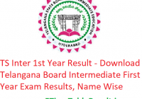 TS Inter 1st Year Result 2019 - Download Telangana Board Intermediate First Year Exam Results, Name Wise