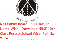 Nagaland Board HSSLC Result 2019 Name Wise - Download NBSE 12th Class Exam Results School Wise, Roll No Wise