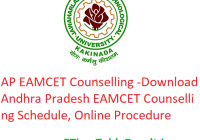 AP EAMCET 2019 Counselling - Download Andhra Pradesh EAMCET Cunselling, Schedule, Online Procedure